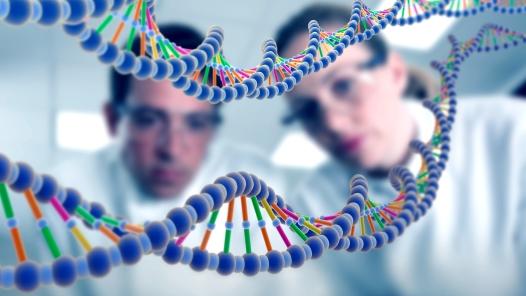 genetinis tyrimas